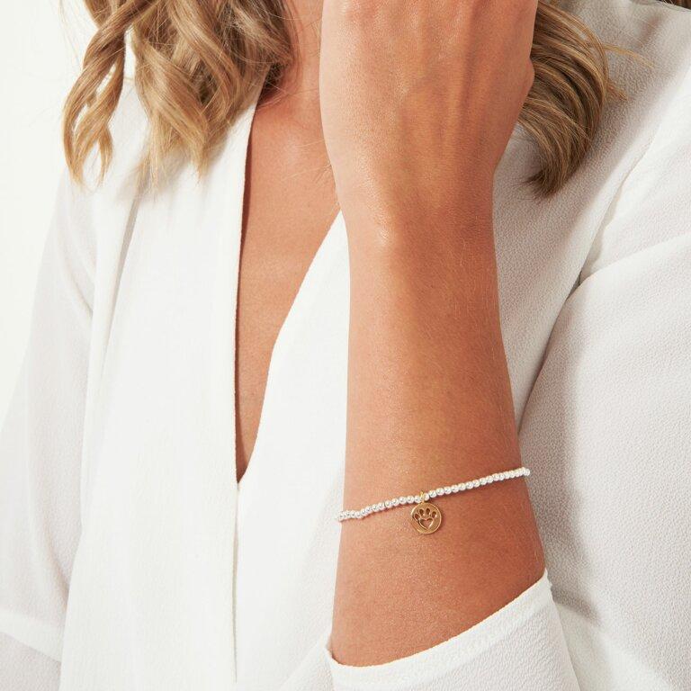 A Little Pawfect Bracelet