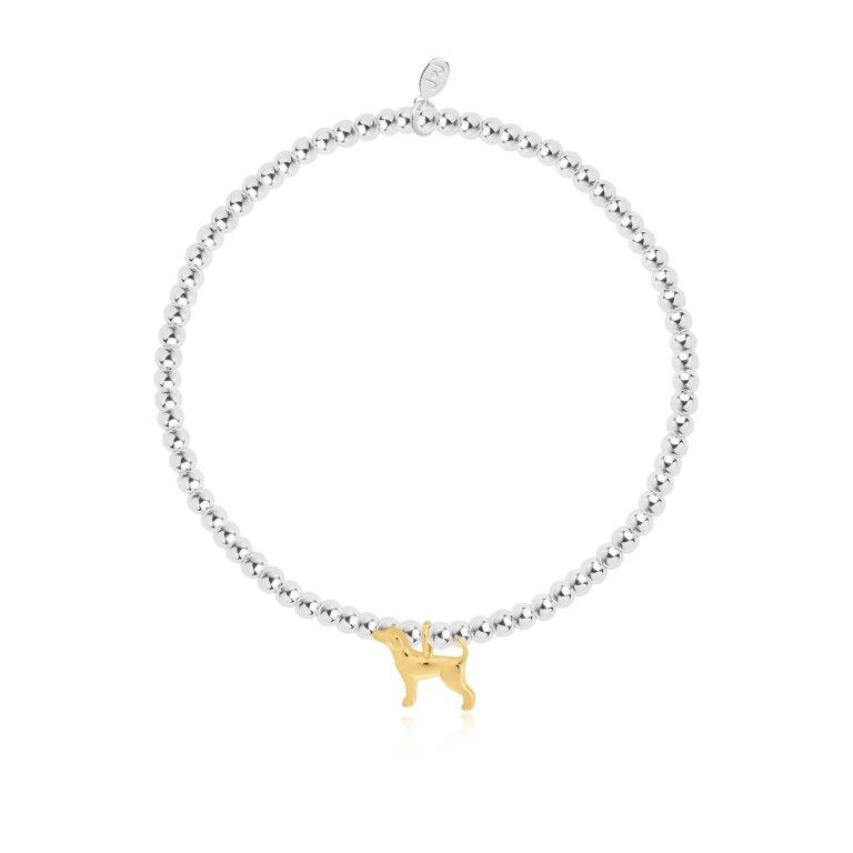A Little Labradorable Bracelet