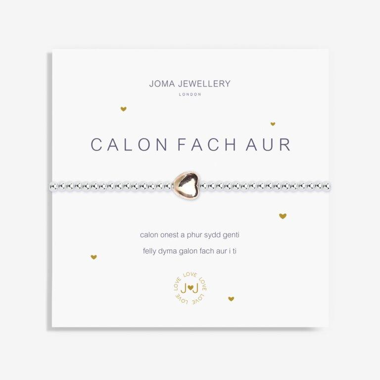 A Little Heart Of Gold Welsh Bracelet