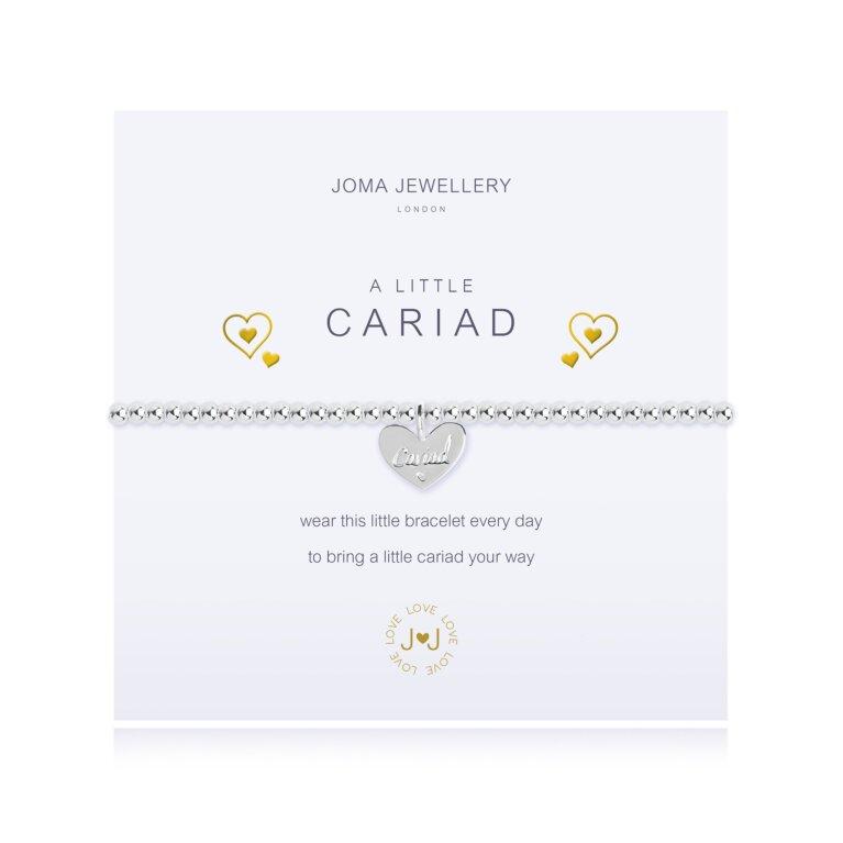 A Little Cariad Welsh Bracelet