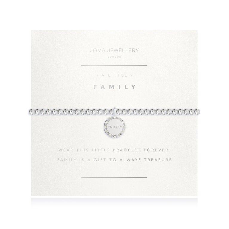 A Little Family Faceted Disc Bracelet