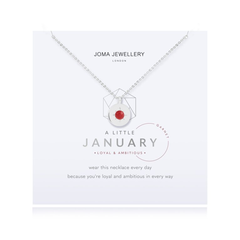 January A Little Birthstone Necklace