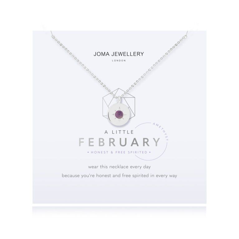 February A Little Birthstone Necklace