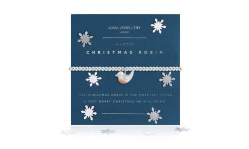 a little Christmas Robin Bracelet | Snow Globe