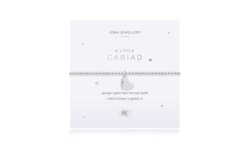 a little Love Bracelet | Welsh